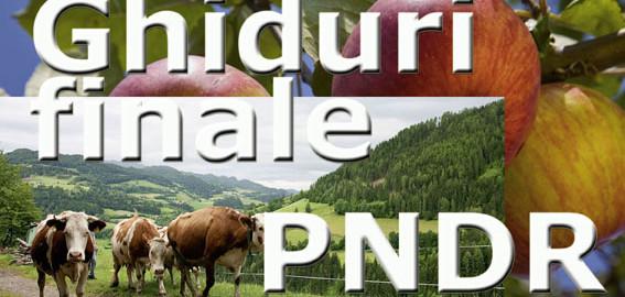 Ghiduri_finale_PNDR_web