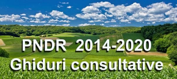 PNDR_Ghiduri_Consultative